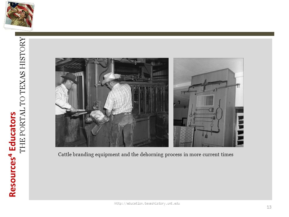 History Snapshots Cattle branding equipment and the dehorning process in more current times. http://education.texashistory.unt.edu.