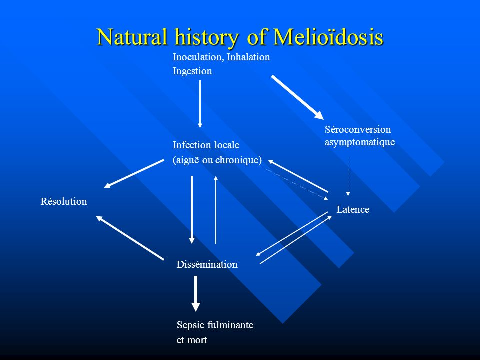 Natural history of Melioïdosis