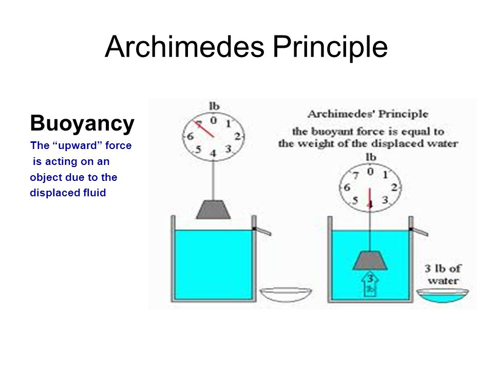 archimedes and the principle of buoyancy essay Experiment #25 buoyancy and specific gravity purpose: in this experiment, archimedes' principle will be studied in the application of determining the densities and specific gravities of solid and liquid samples.