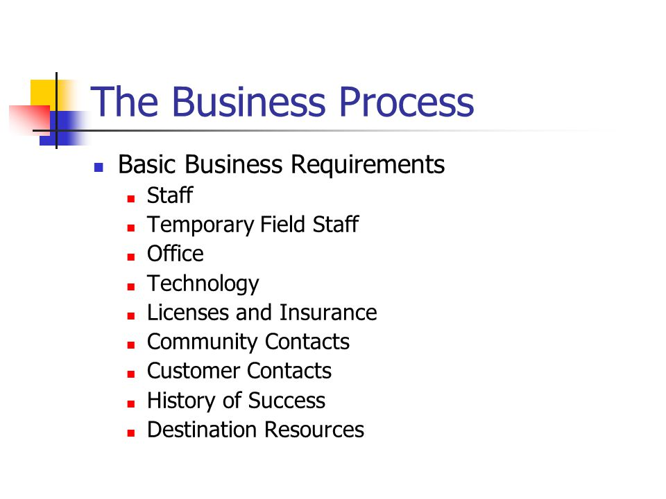 The Business Process Basic Business Requirements Staff