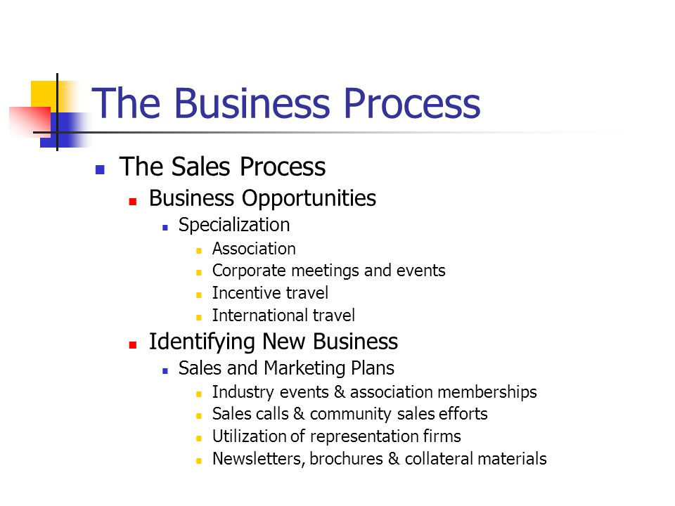 The Business Process The Sales Process Business Opportunities