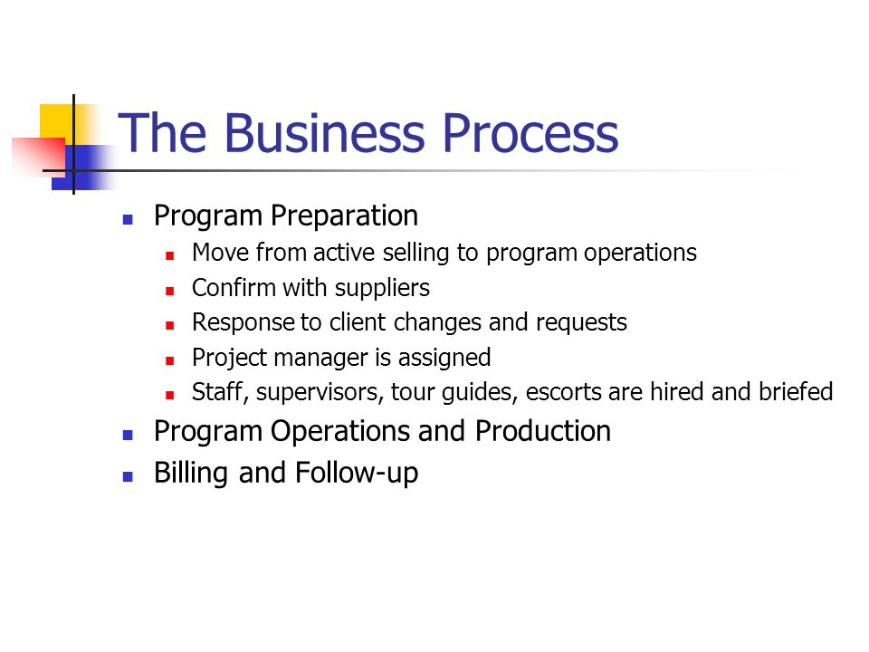 The Business Process Program Preparation
