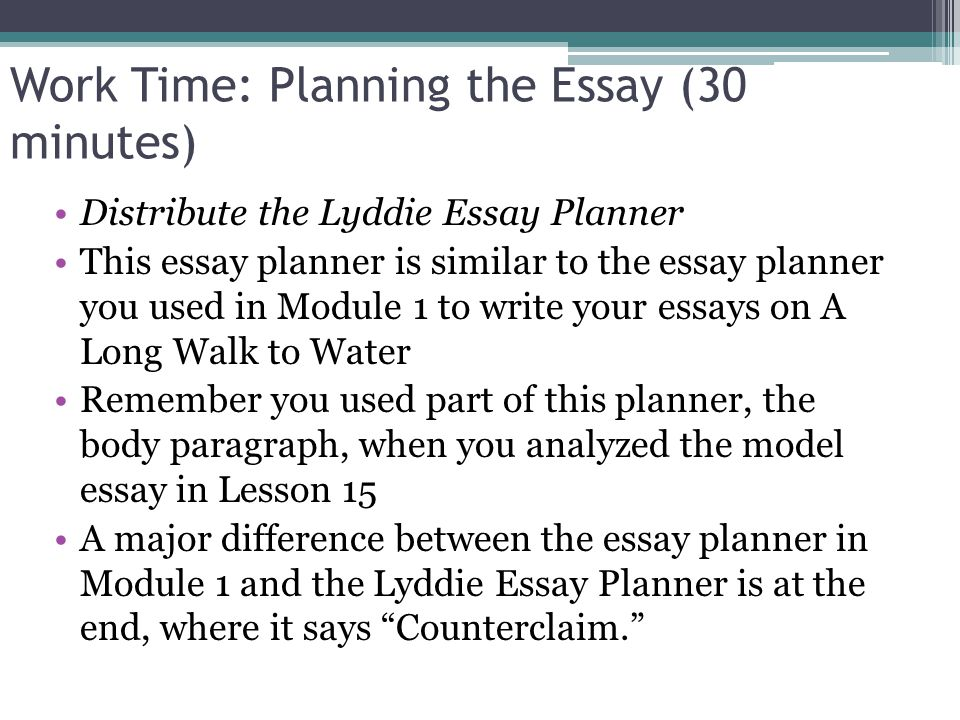 Which hint for planning and writing an argumentative essay is described in the following statement