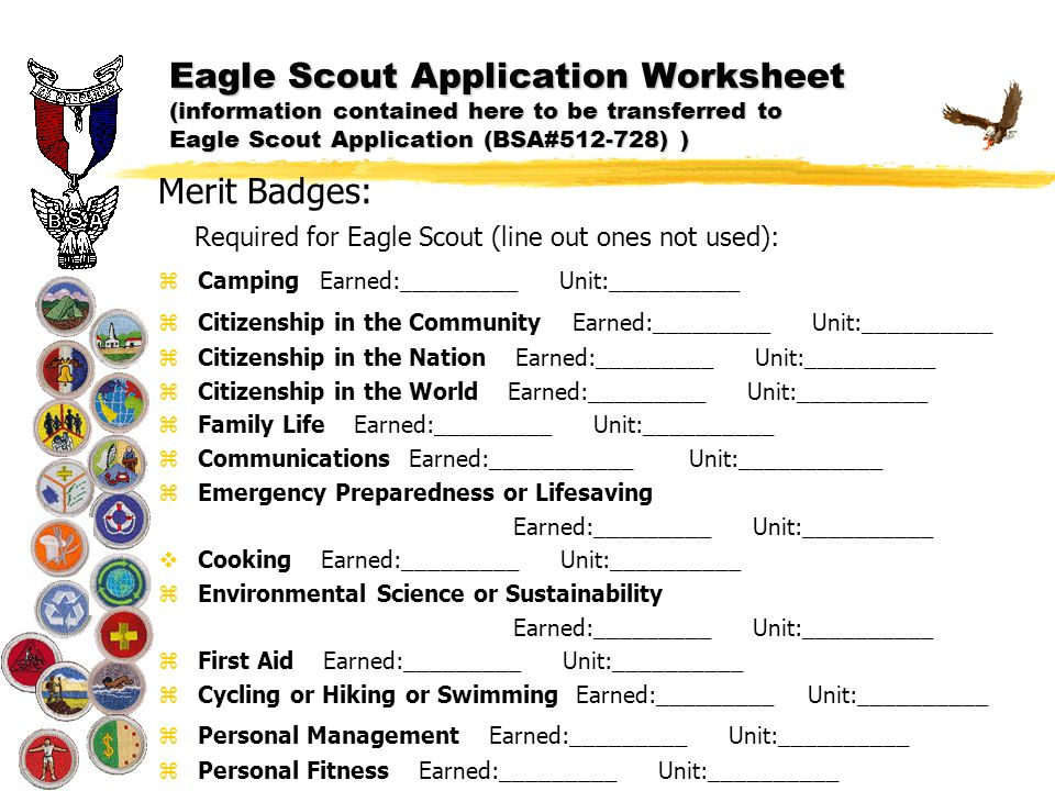 Eagle Scout Application ppt download – Citizenship in the World Worksheet