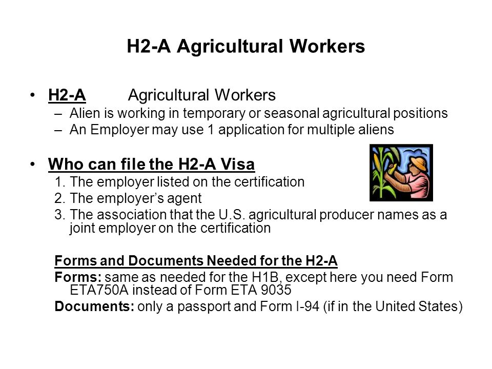 The H Visa-Temporary Worker - ppt video online download