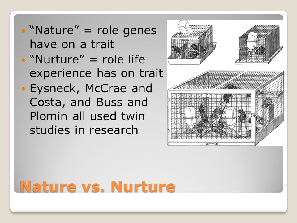 """twin genetic studies nature vs nurture As identical twins, we share 100 percent of our genes  if researchers can  understand """"nature vs nurture"""" in twins, it will be easier to figure out."""