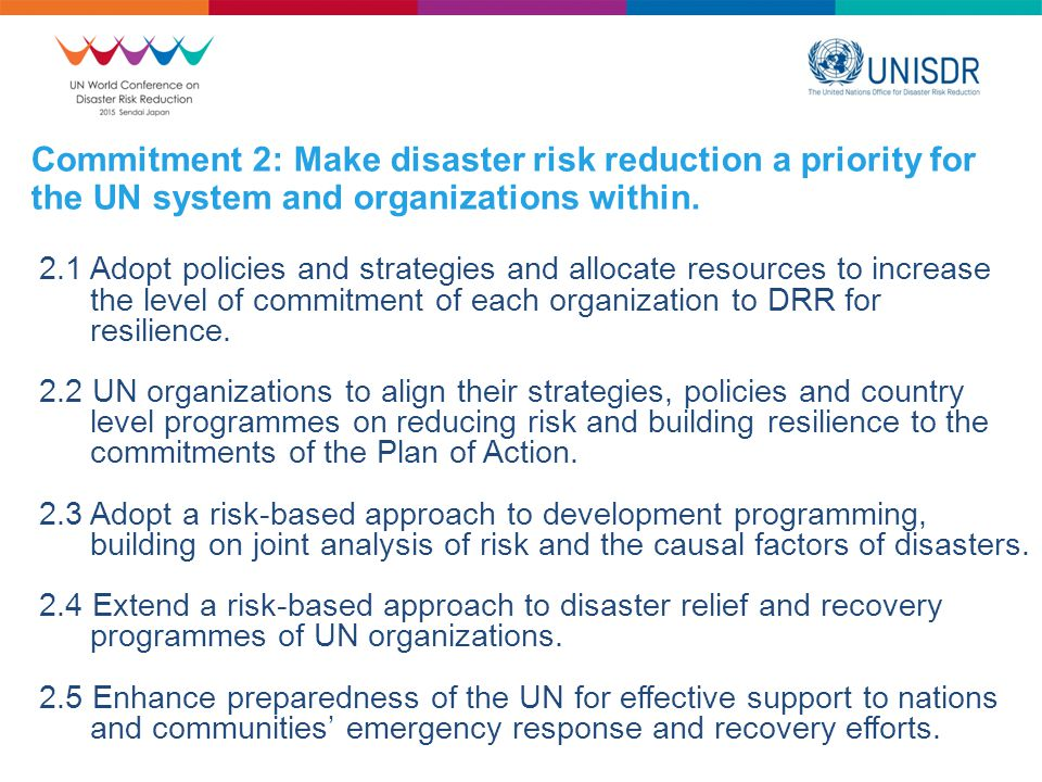 Commitment 2: Make disaster risk reduction a priority for the UN system and organizations within.