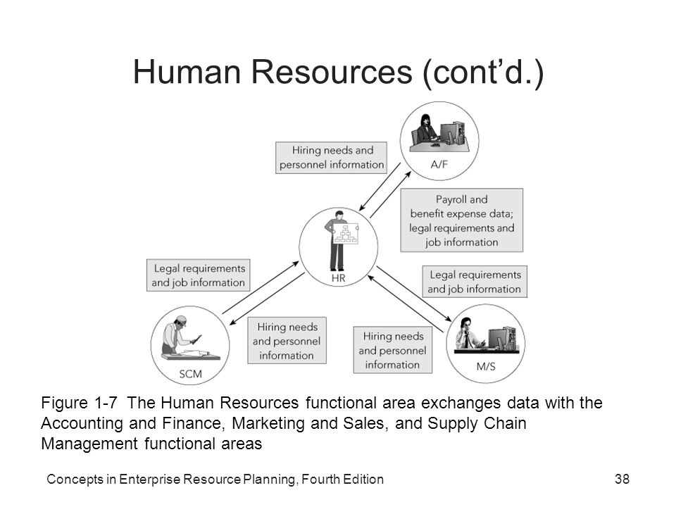 functional area plan: human resources essay Functional areas of nhs and tesco essay  human resources (doctors, nurses etc) doctors/nurses play a vital role in the nhs they help to make the problem better for anyone with medical problems prior to becoming a doctor they will have to take a series of exams and training so they know how to operate and so they know the body inside out.