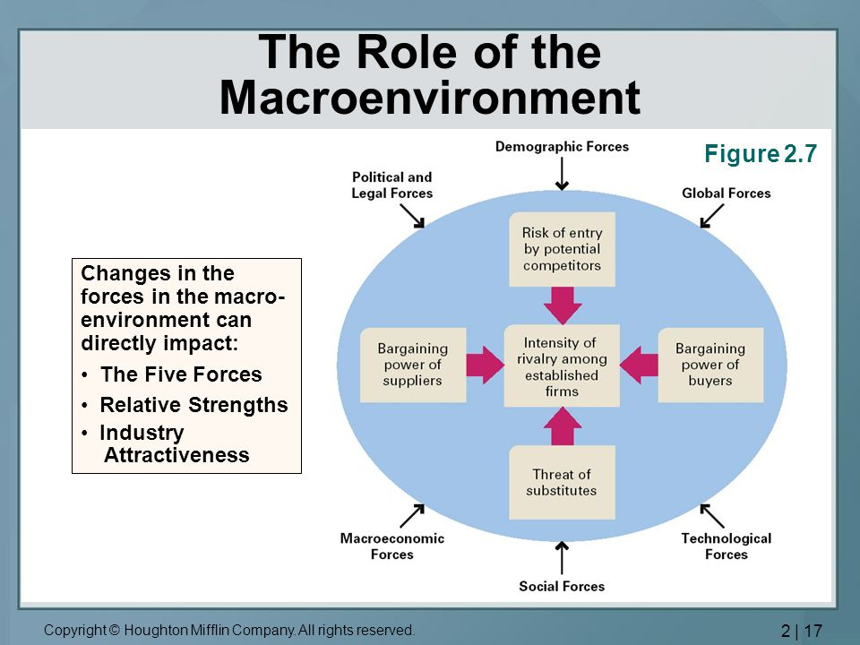 The Role of the Macroenvironment