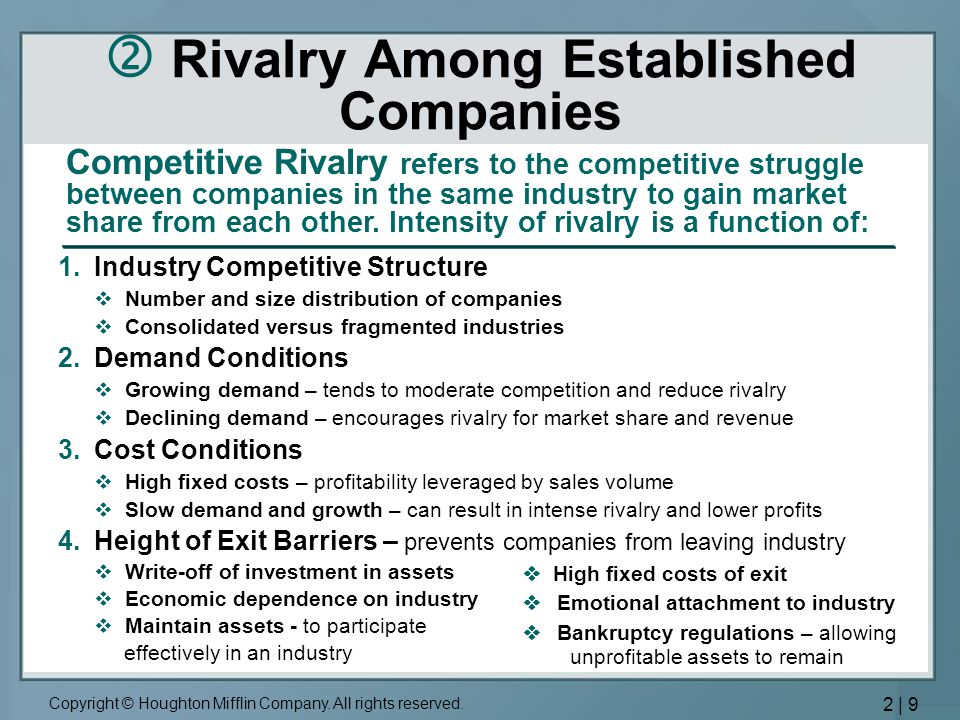  Rivalry Among Established Companies