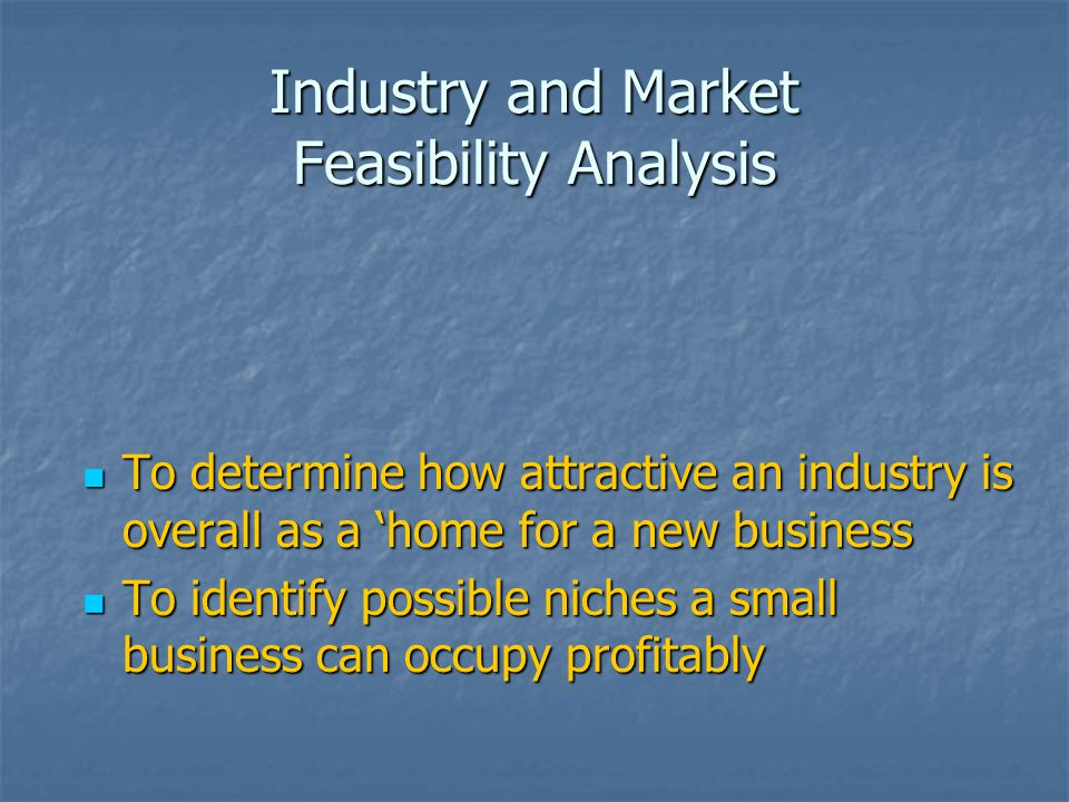 Conducting a Feasibility Study and Crafting a Business Plan - ppt ...