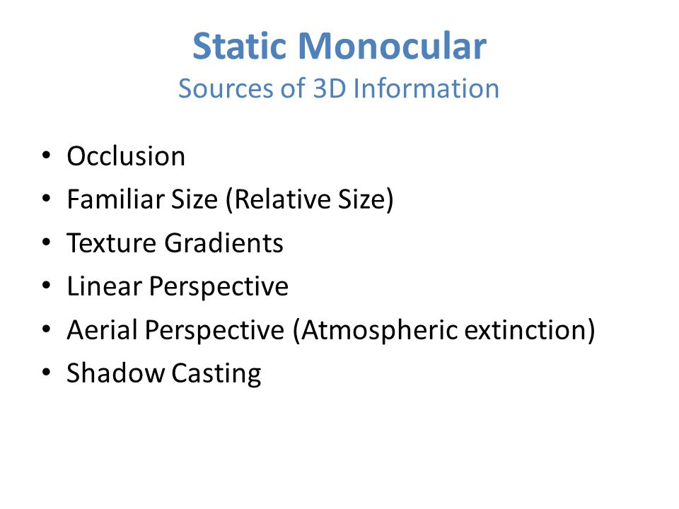 Static Monocular Sources of 3D Information
