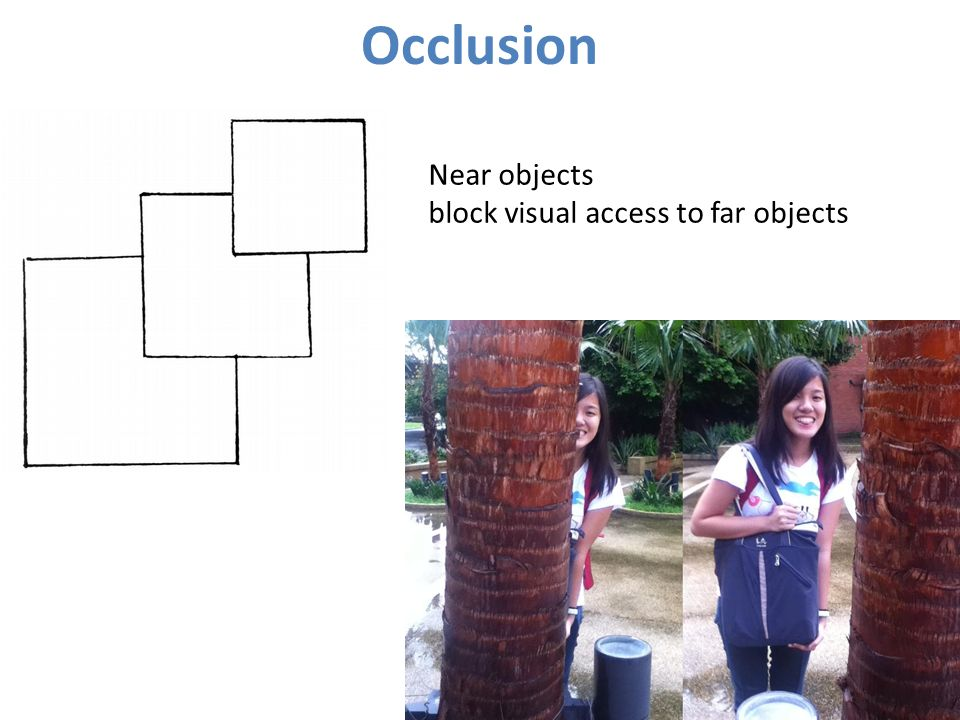 Occlusion Near objects block visual access to far objects