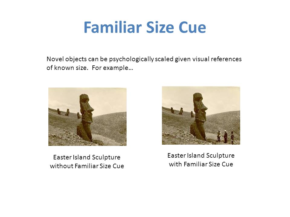 Familiar Size Cue Novel objects can be psychologically scaled given visual references. of known size. For example…