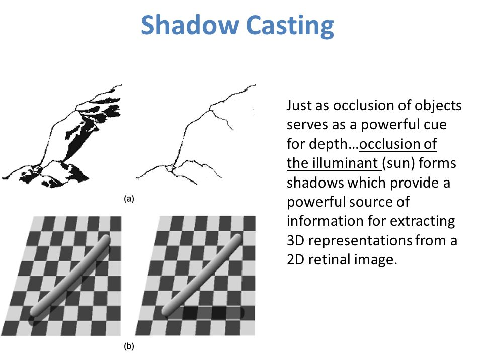 download optical trapping and