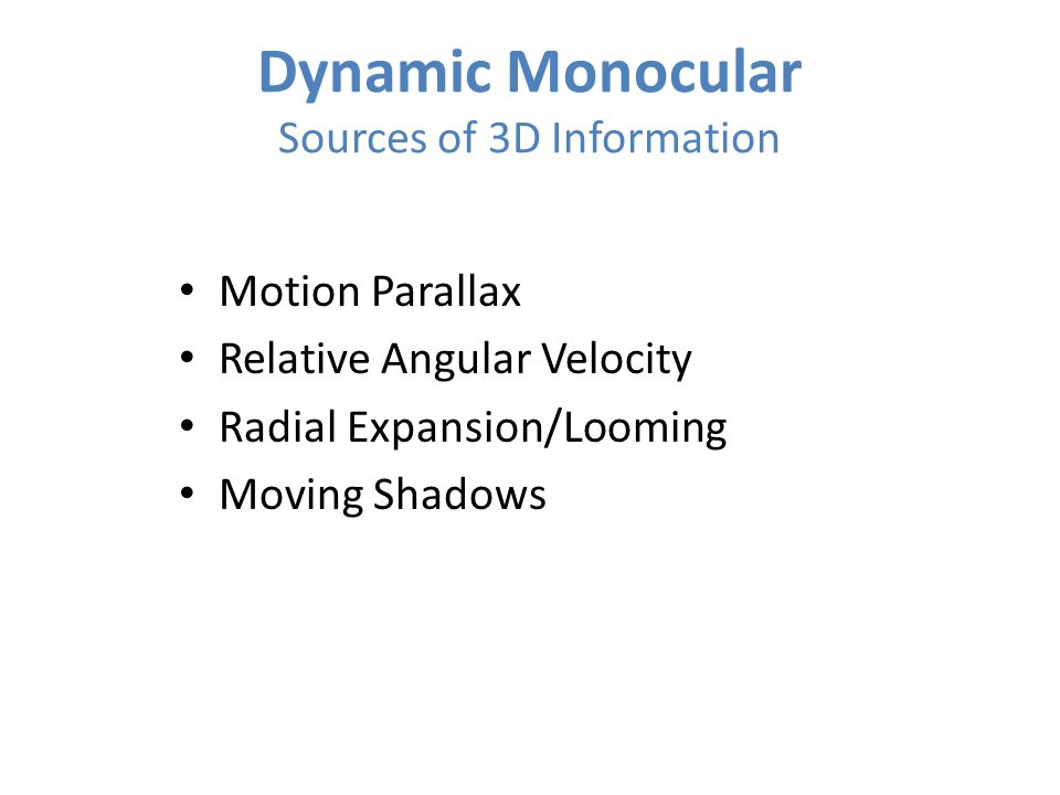 Dynamic Monocular Sources of 3D Information