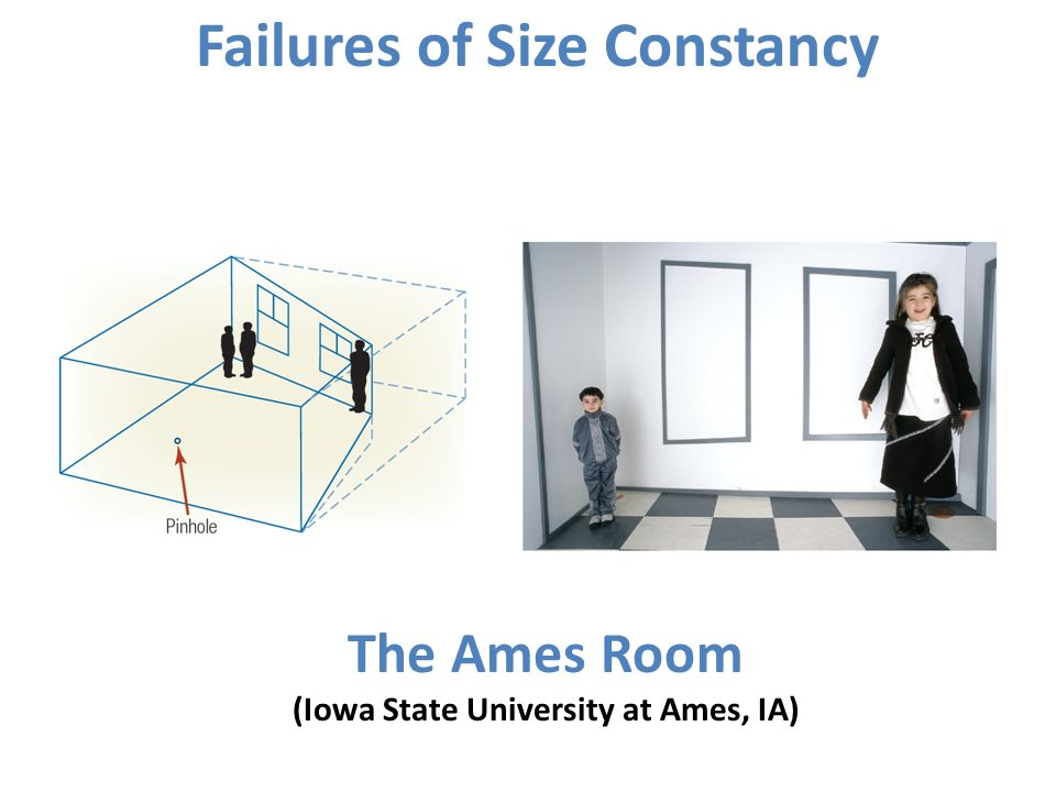The Ames Room (Iowa State University at Ames, IA)