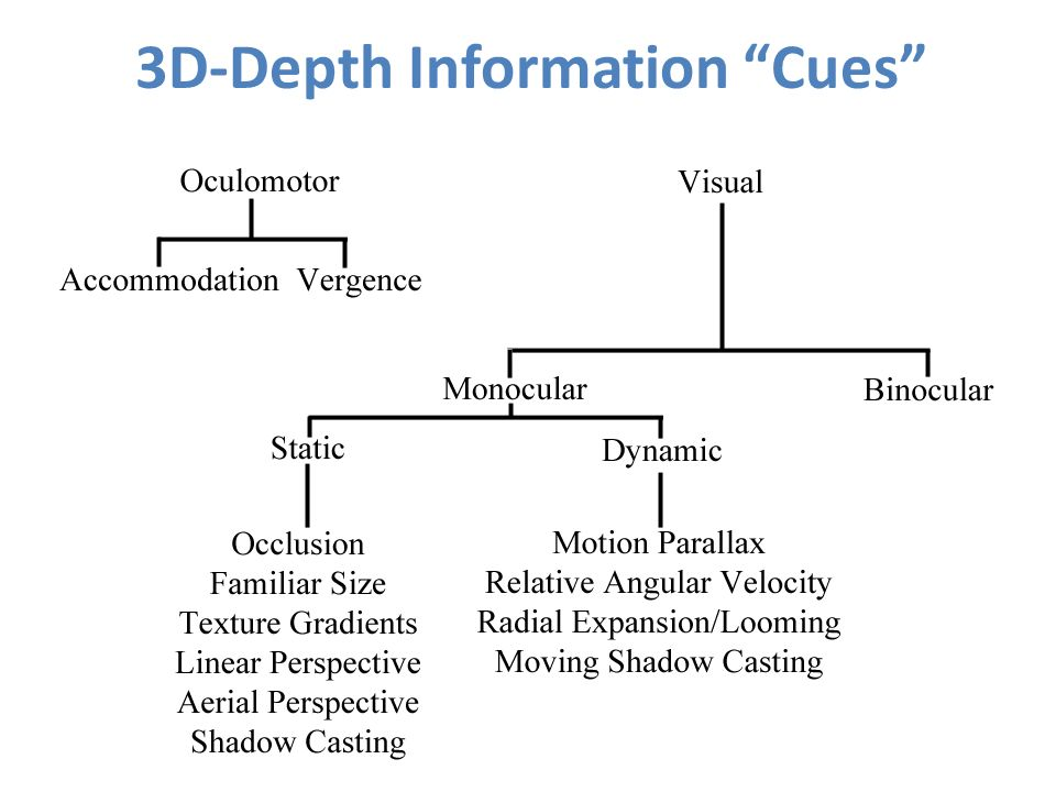3D-Depth Information Cues