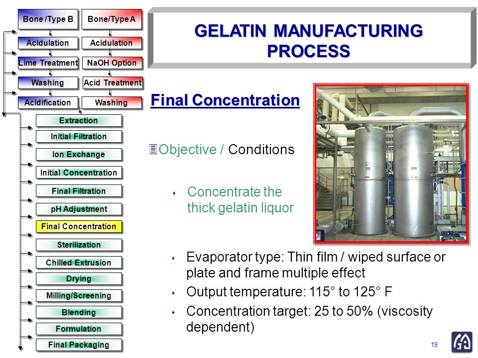gelatin purification by ion exchange resin
