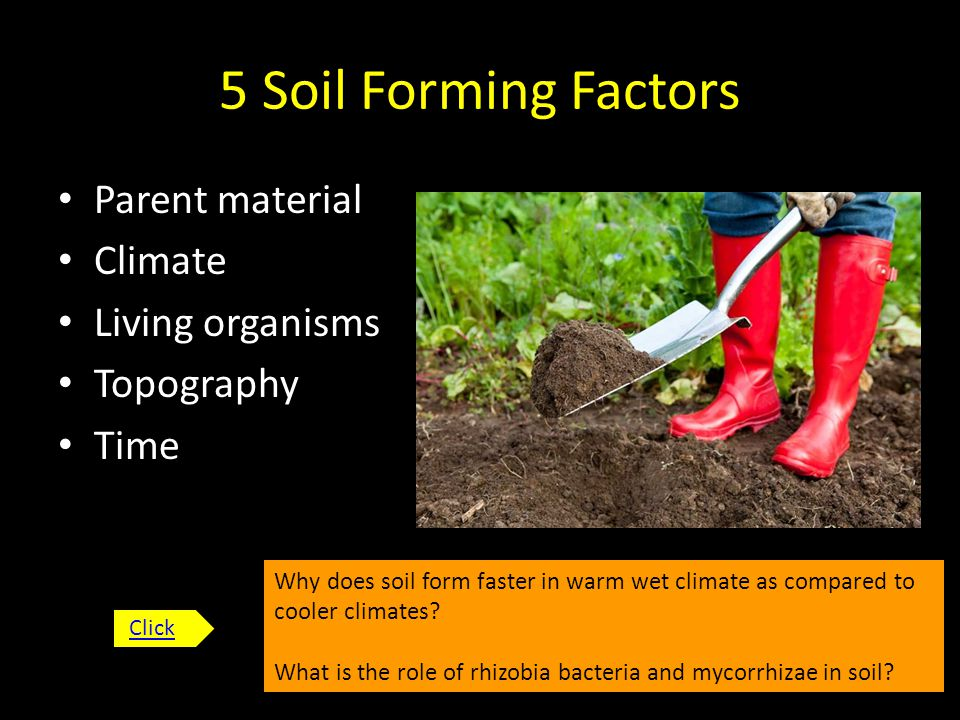 Let s get down and dirty ppt download for Soil forming factors
