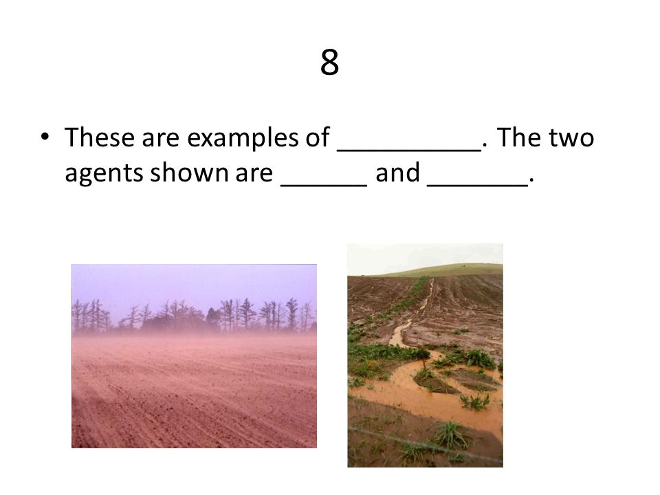 8 These are examples of __________. The two agents shown are ______ and _______.