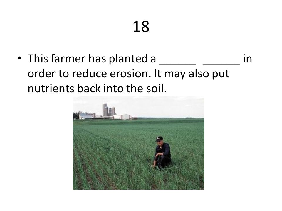 18 This farmer has planted a ______ ______ in order to reduce erosion.