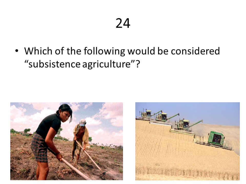 24 Which of the following would be considered subsistence agriculture