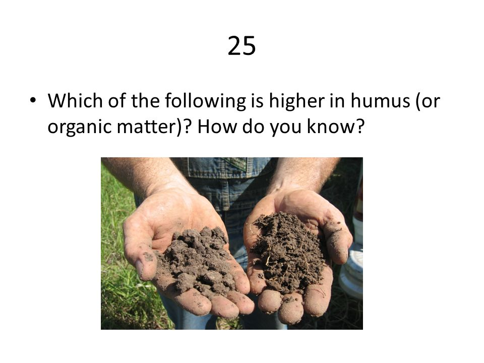 25 Which of the following is higher in humus (or organic matter) How do you know