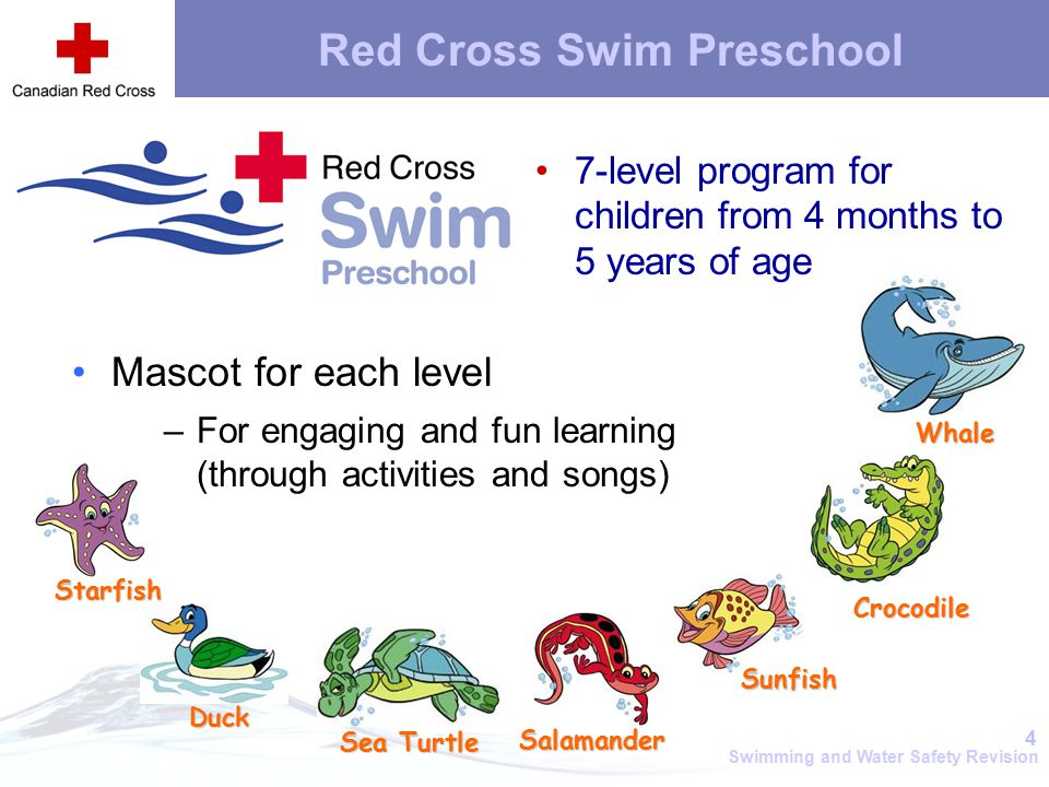 American Red Cross Learn-to-Swim Program - smuggs.com