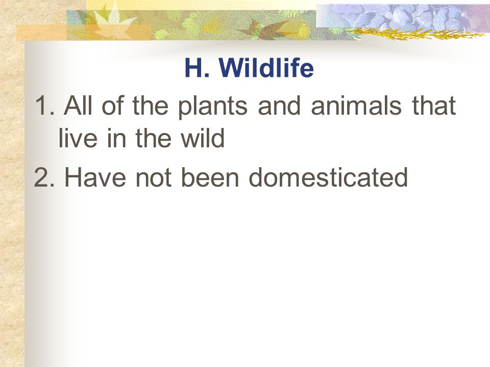 H. Wildlife 1. All of the plants and animals that live in the wild 2. Have not been domesticated