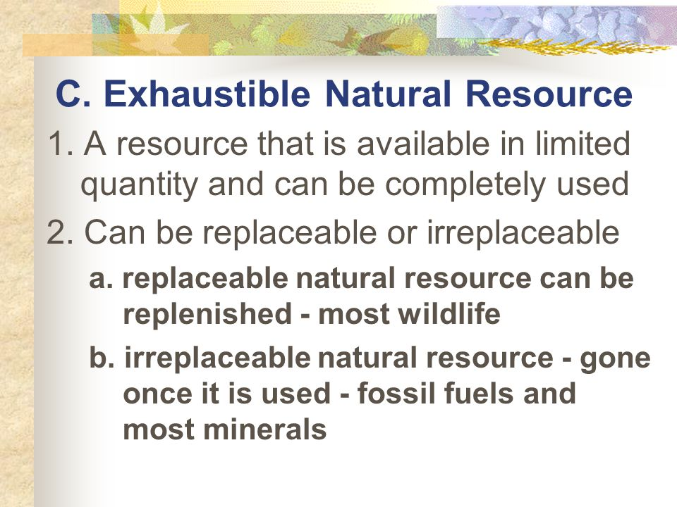 C. Exhaustible Natural Resource