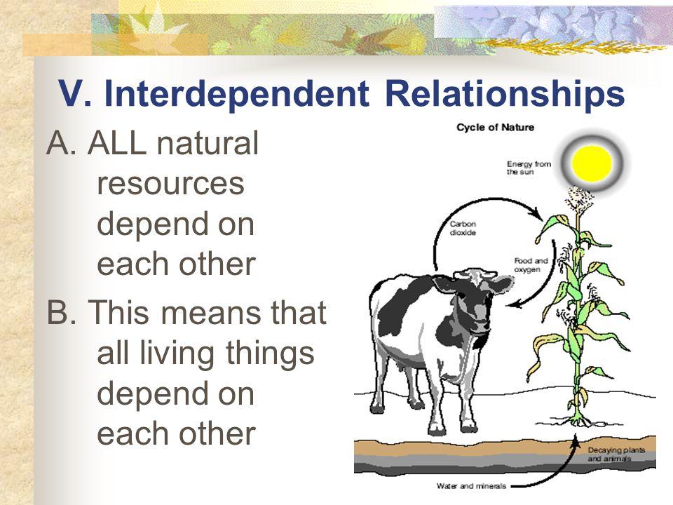 V. Interdependent Relationships