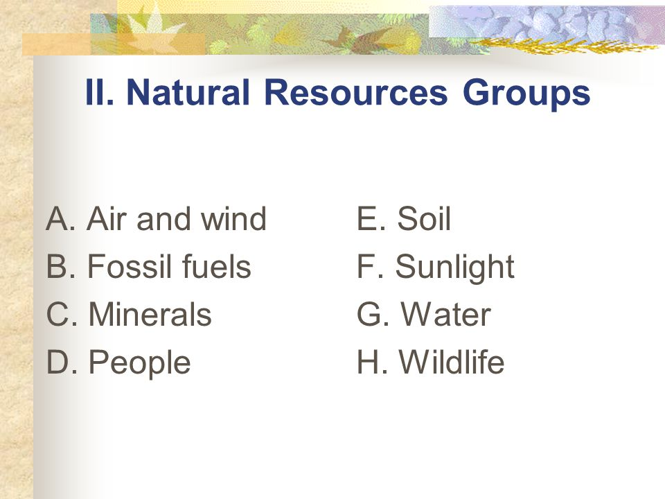 II. Natural Resources Groups
