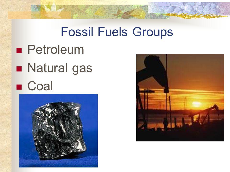Fossil Fuels Groups Petroleum Natural gas Coal