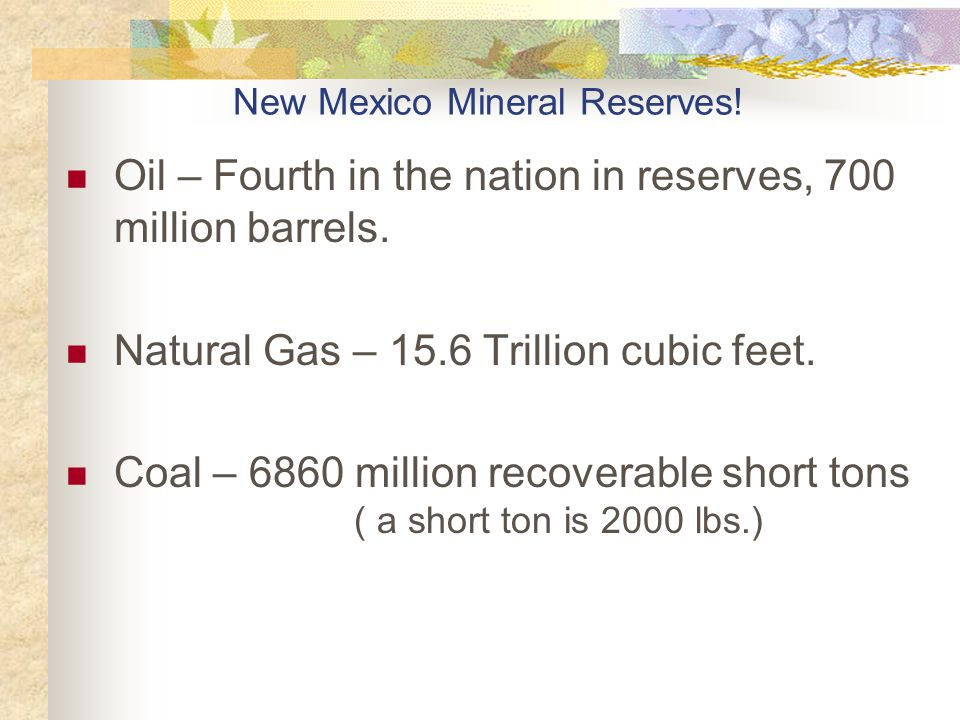 New Mexico Mineral Reserves!