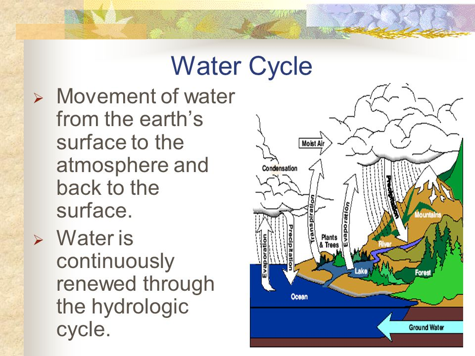 Water Cycle Movement of water from the earth's surface to the atmosphere and back to the surface.