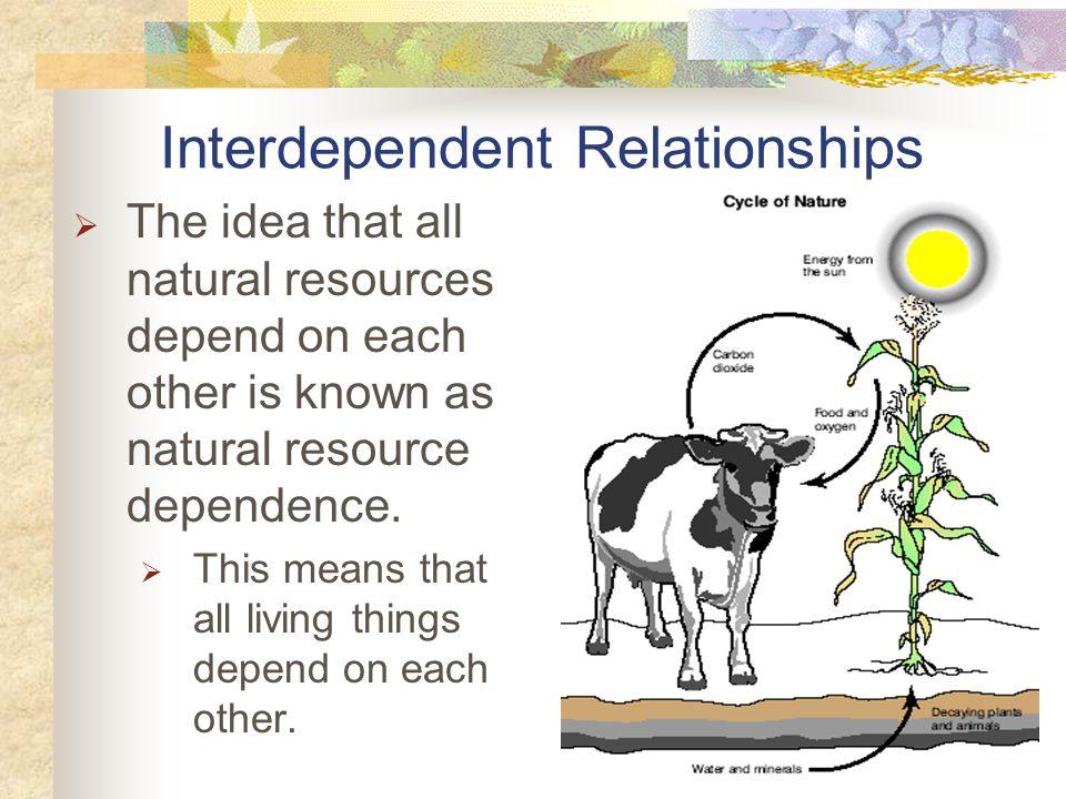 Interdependent Relationships
