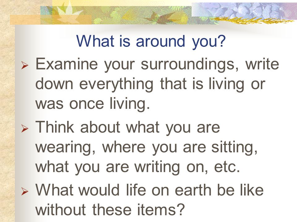 What is around you Examine your surroundings, write down everything that is living or was once living.