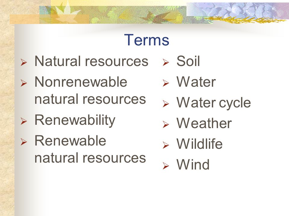 Terms Natural resources Nonrenewable natural resources Renewability