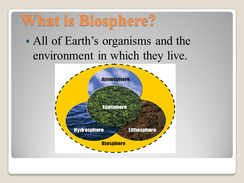 What is Biosphere All of Earth's organisms and the environment in which they live.