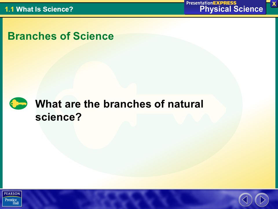 Branches of Science What are the branches of natural science
