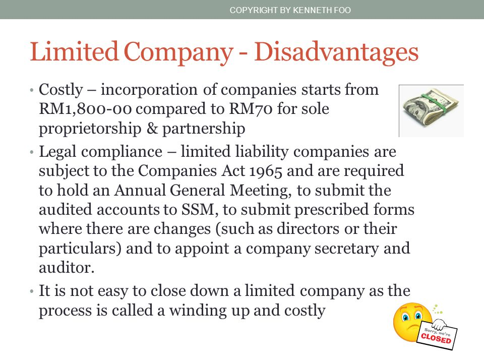 Limited Company - Disadvantages