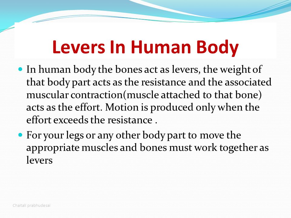 levers in the body 1st class levers in the human body there are very few in the human body a rare example is the force of the triceps at the olecranon 2nd class levers.