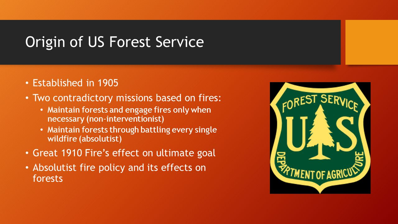 an introduction to the history of the forest service History of the fire program  s-190 introduction to wildland fire  the forest service also hosts a wildland fire camp every other year that is a simulated.