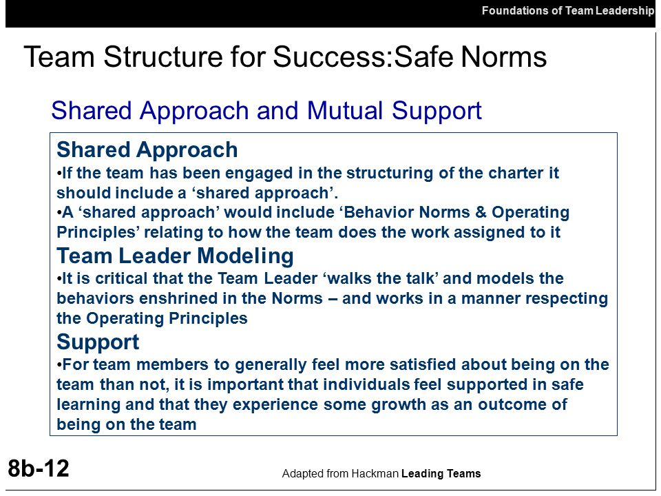 Team Structure for Success:Safe Norms