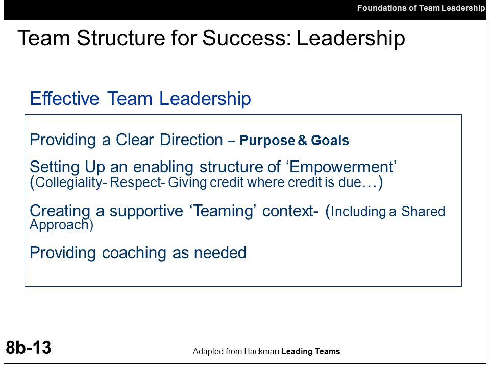 Team Structure for Success: Leadership