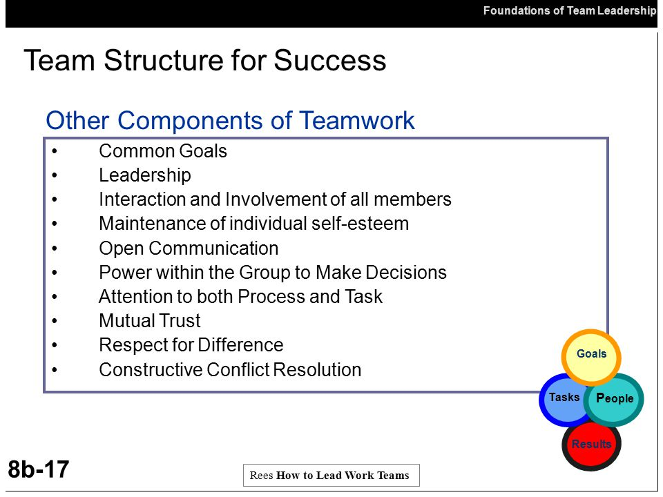 Team Structure for Success