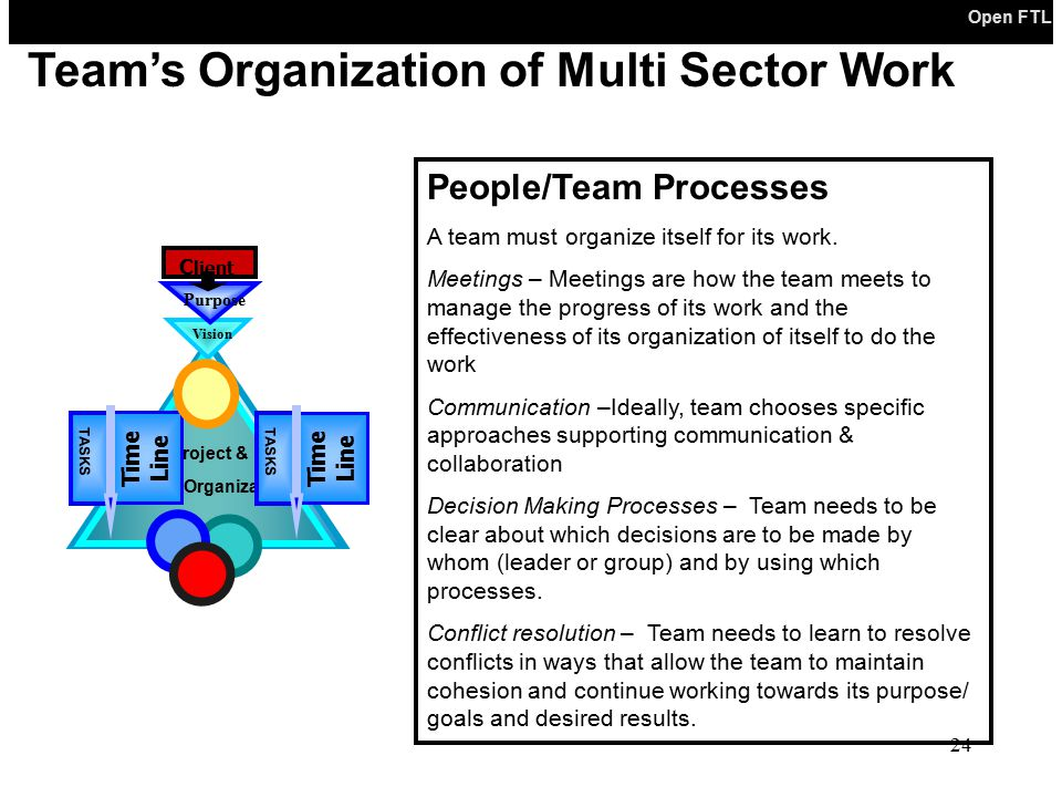 Team's Organization of Multi Sector Work