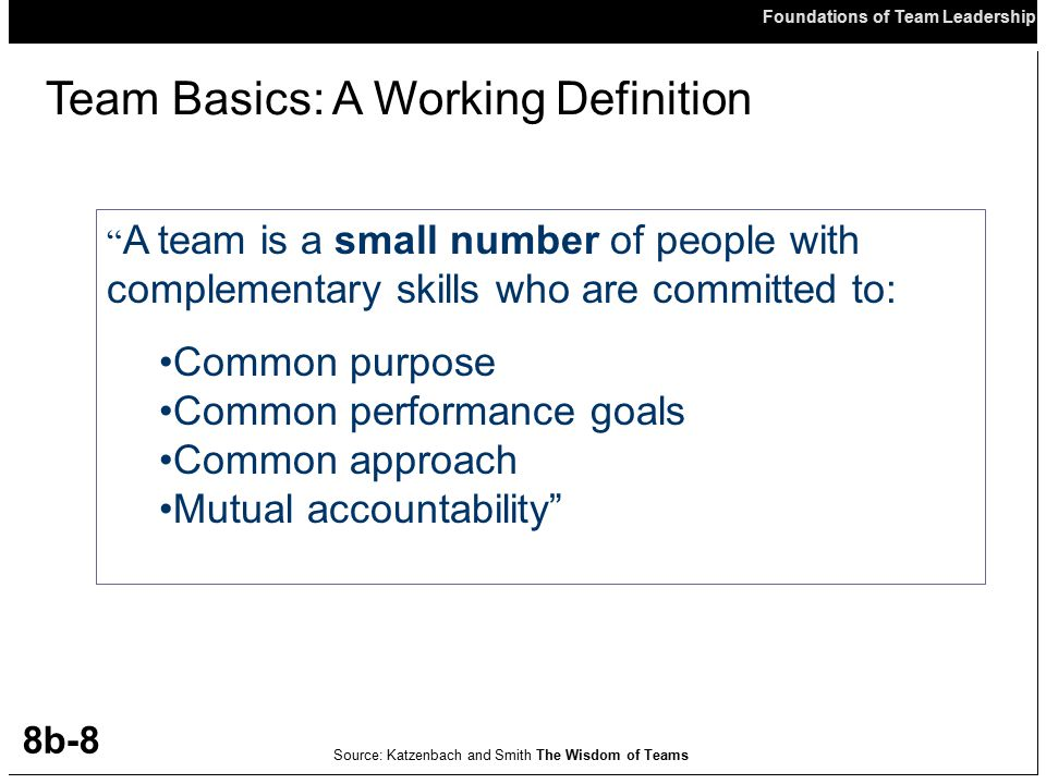 Team Basics: A Working Definition