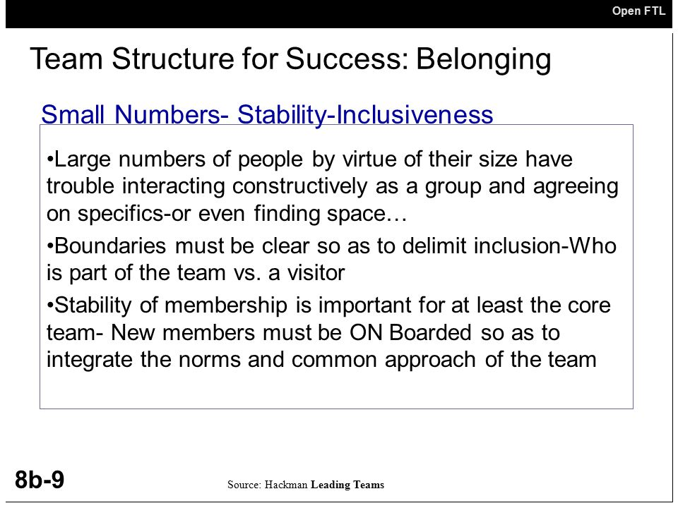 Team Structure for Success: Belonging
